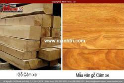 Phân biệt sàn gỗ Căm xe với các loại sàn gỗ tự nhiên khác