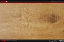 Sàn gỗ Wittex W8765