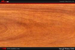 Sàn gỗ Wittex T342
