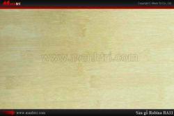 Sàn gỗ Robina BA11