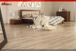 Giới thiệu hình ảnh sàn gỗ công nghiệp đẹp 04/2012