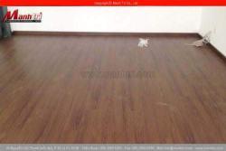 Ứng dụng và đặc điểm của sàn nhựa giả gỗ Galaxy