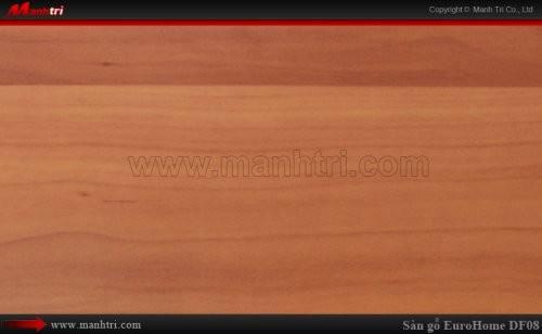 Sàn gỗ EuroHome DF08