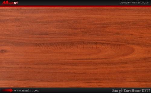 Sàn gỗ EuroHome DF67