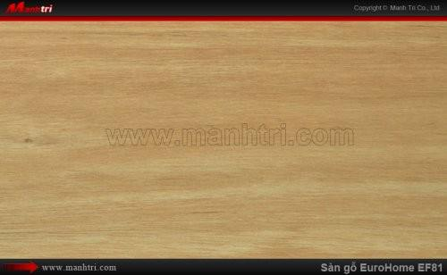 Sàn gỗ EuroHome EF81