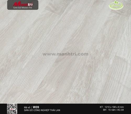 Sàn gỗ LeoWood W09