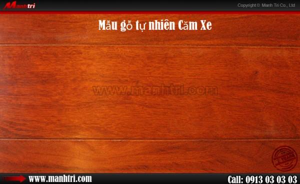 http://cdn.manhtri.vn/asset/home/img/500/manhtri/articles/2013/10/san-go-cam-xe1-600x369.jpg