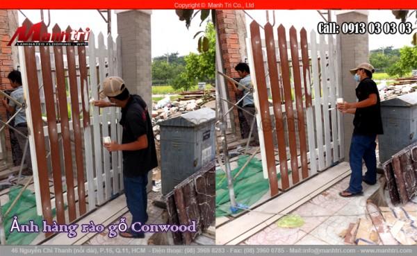 Hình ảnh người thợ thi công Mạnh Trí đang sơn màu nâu cho hàng rào gỗ Conwood