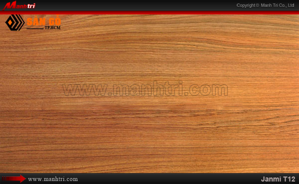 Sàn gỗ Janmi T12 - 12mm