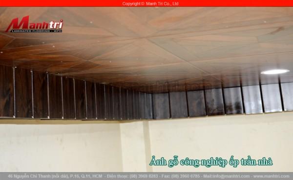 Ốp trần nhà bằng gỗ công nghiệp ESG-504 tại quận Tân Bình, TPHCM